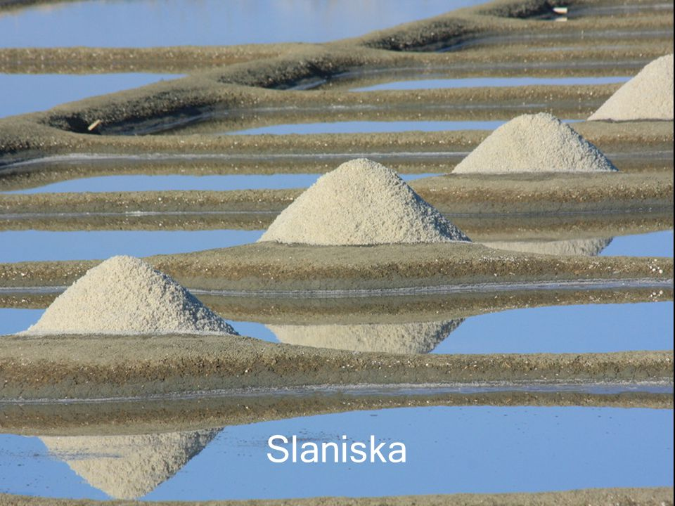 Slaniska