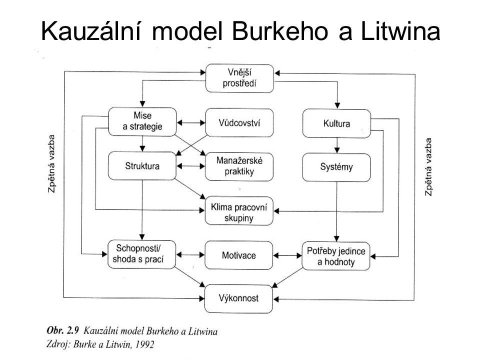 Kauzální model Burkeho a Litwina