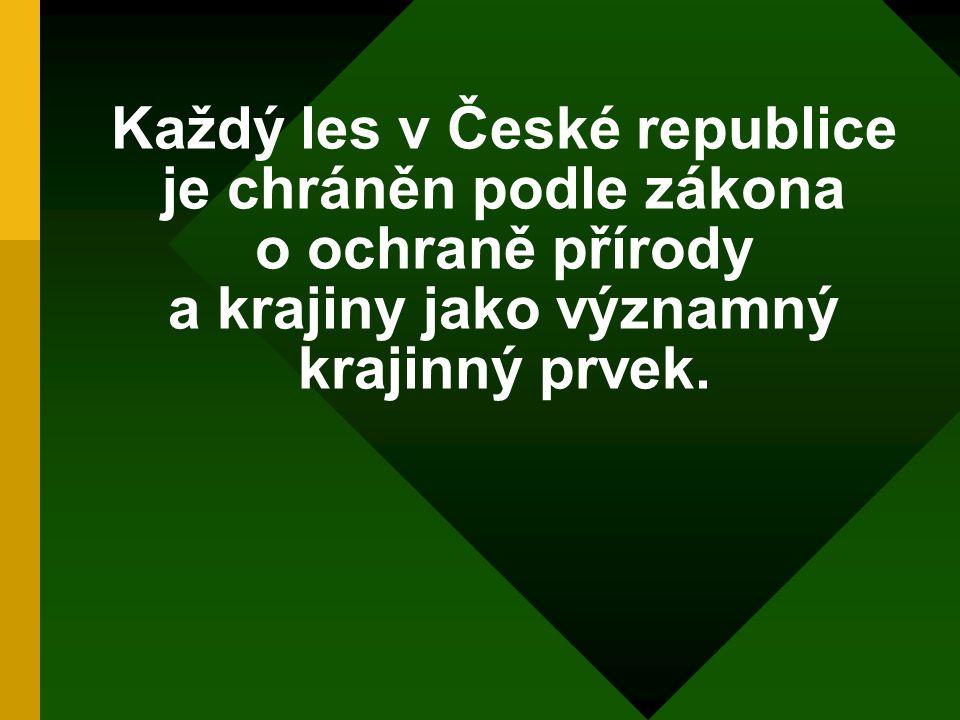 Každý les v České republice je chráněn podle zákona o ochraně přírody a krajiny jako významný krajinný prvek.