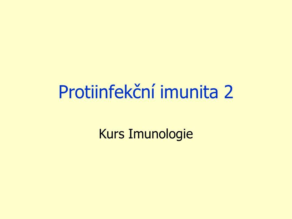 Protiinfekční imunita 2