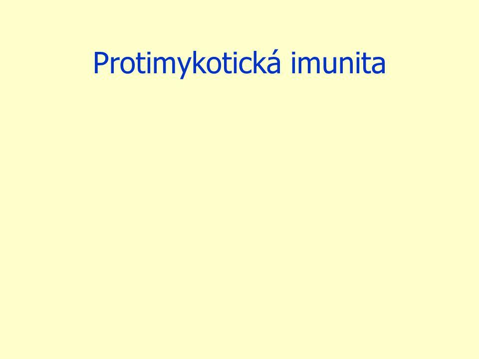 Protimykotická imunita
