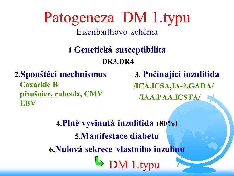 Patogeneza DM 1.typu Eisenbarthovo schéma