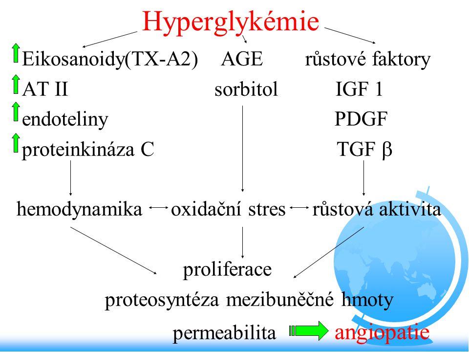 Hyperglykémie Eikosanoidy(TX-A2) AGE růstové faktory