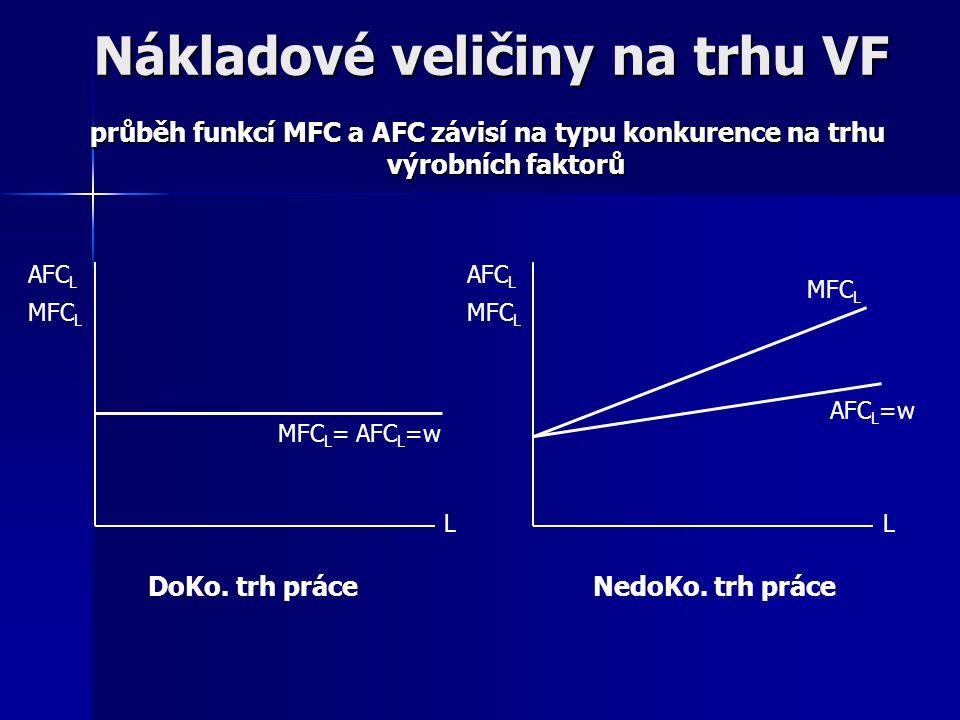Nákladové veličiny na trhu VF