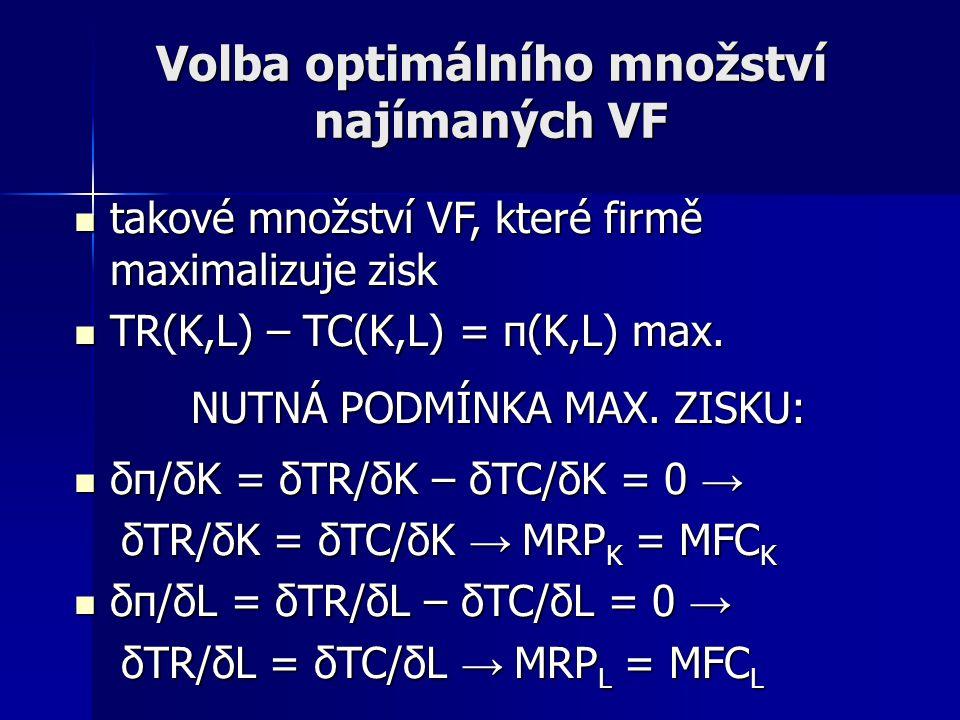 Volba optimálního množství najímaných VF