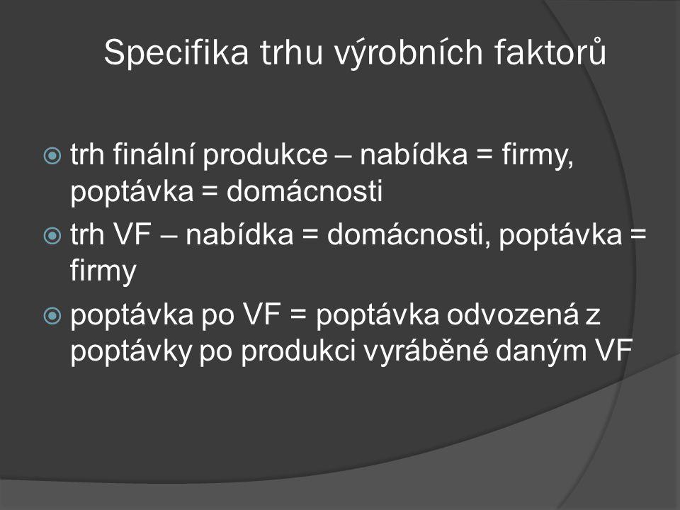 Specifika trhu výrobních faktorů