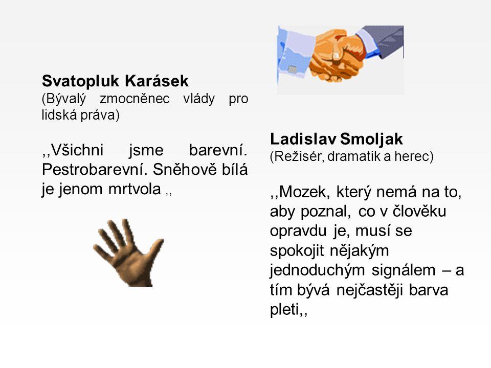 Svatopluk Karásek (Bývalý zmocněnec vlády pro lidská práva) ,,Všichni jsme barevní. Pestrobarevní. Sněhově bílá je jenom mrtvola ,,