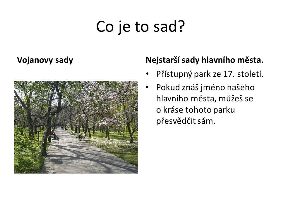 Co je to sad Vojanovy sady Nejstarší sady hlavního města.
