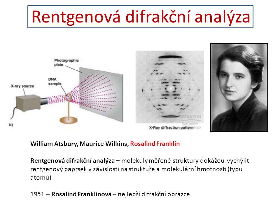 Rentgenová difrakční analýza