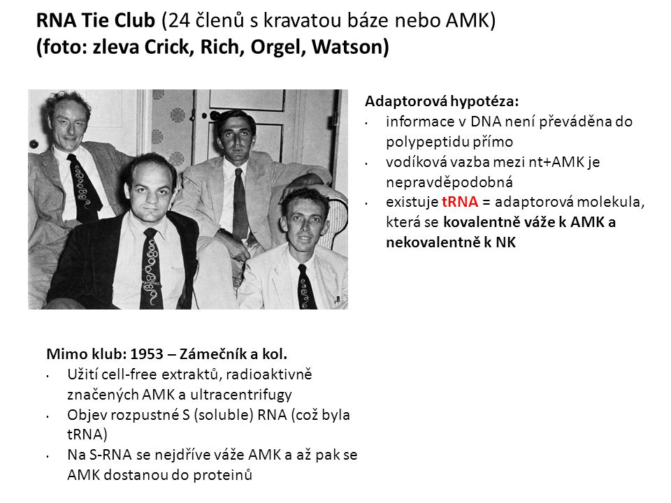 RNA Tie Club (24 členů s kravatou báze nebo AMK)