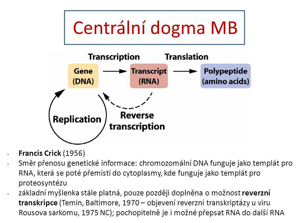 Centrální dogma MB Francis Crick (1956)