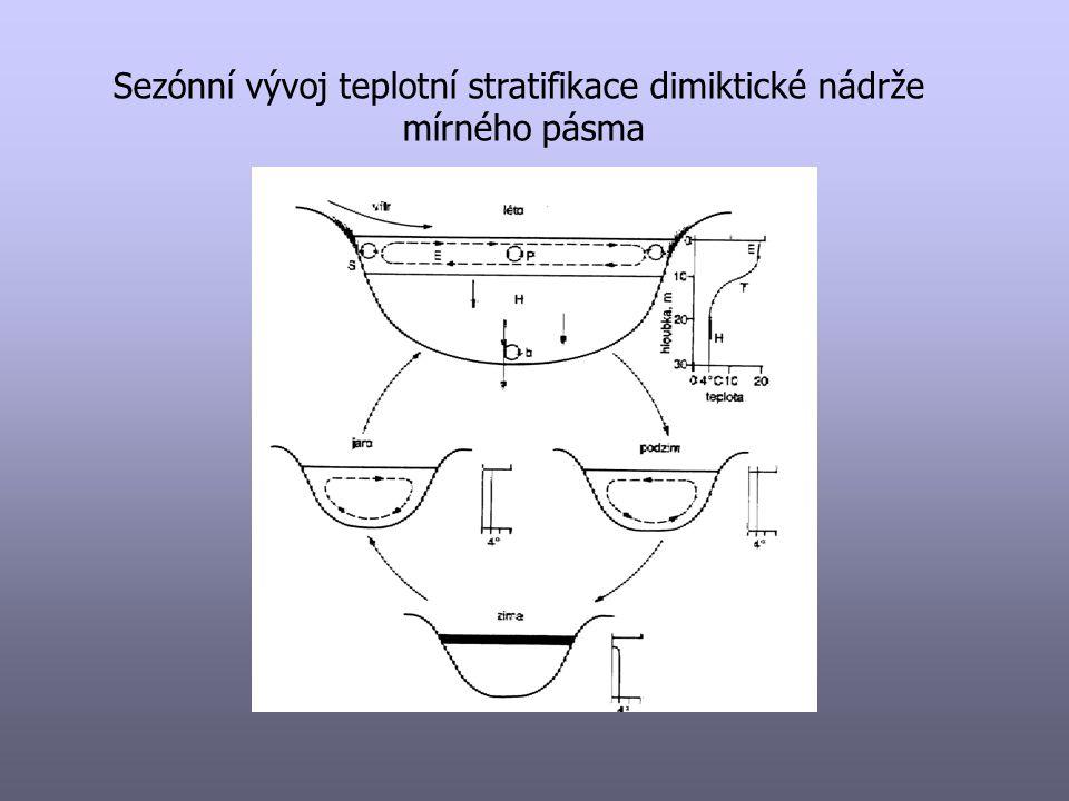 Sezónní vývoj teplotní stratifikace dimiktické nádrže