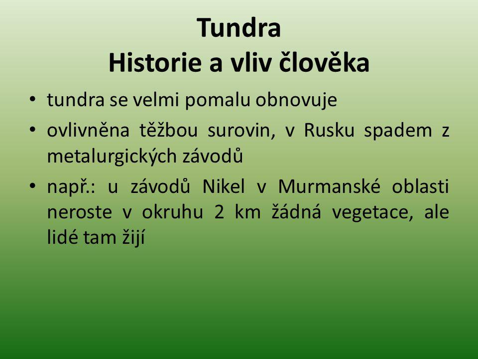 Tundra Historie a vliv člověka