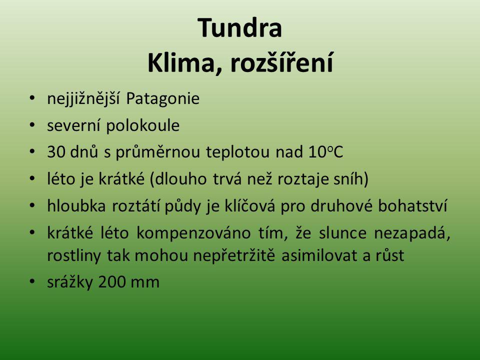 Tundra Klima, rozšíření