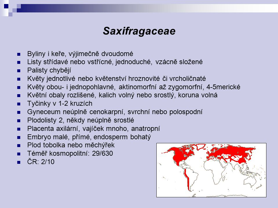Saxifragaceae Byliny i keře, výjimečně dvoudomé