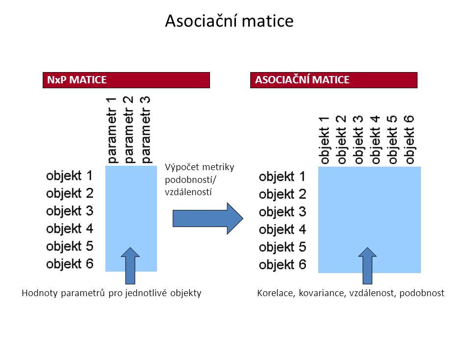 Asociační matice NxP MATICE ASOCIAČNÍ MATICE