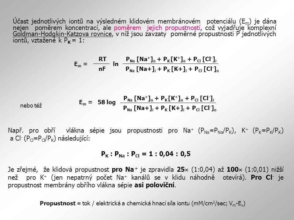 Účast jednotlivých iontů na výsledném klidovém membránovém potenciálu (Em) je dána nejen poměrem koncentrací, ale poměrem jejich propustností, což vyjadřuje komplexní Goldman-Hodgkin-Katzova rovnice, v níž jsou zavzaty poměrné propustnosti P jednotlivých iontů, vztažené k PK = 1:
