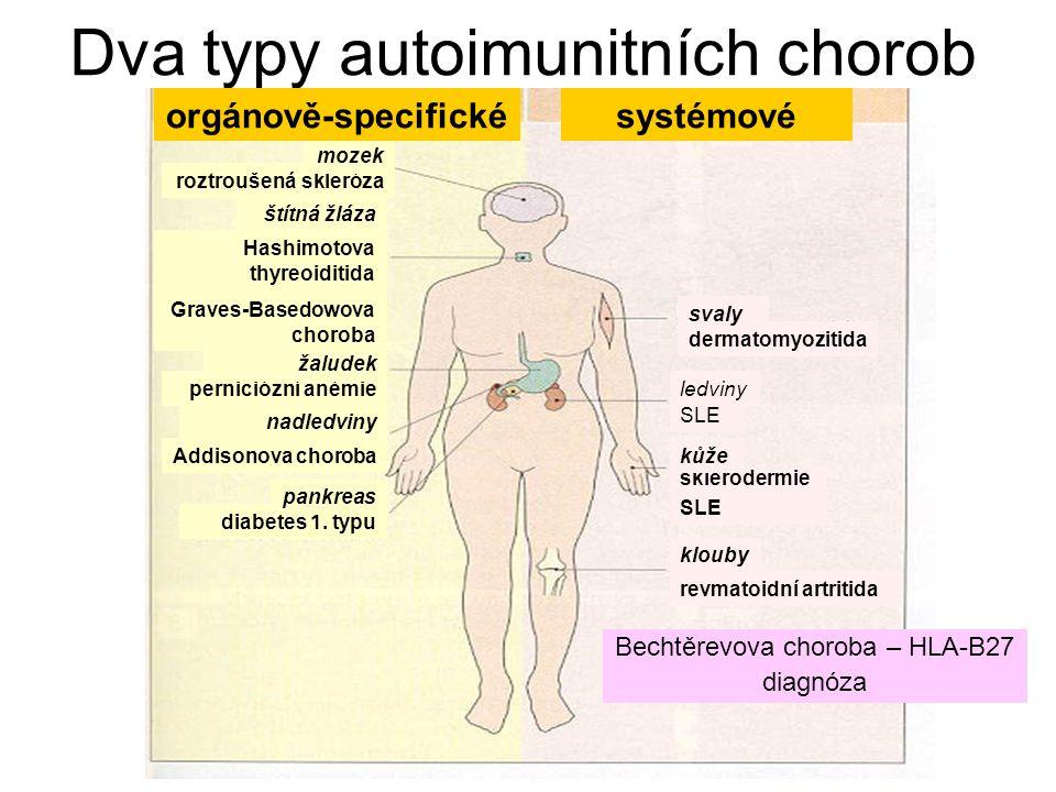 Dva typy autoimunitních chorob