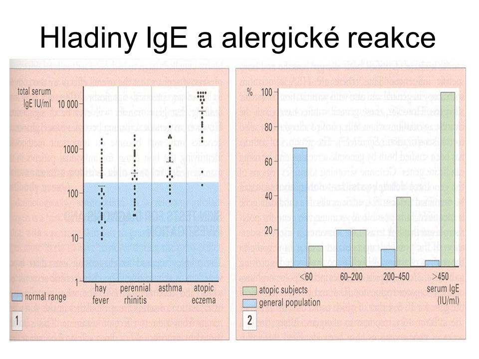 Hladiny IgE a alergické reakce