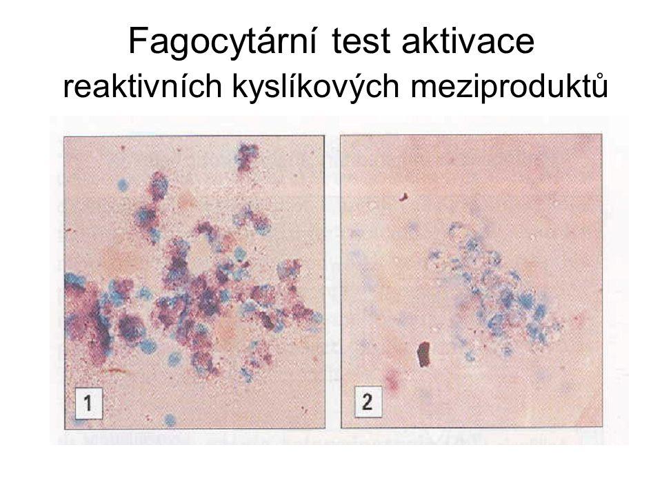 Fagocytární test aktivace reaktivních kyslíkových meziproduktů