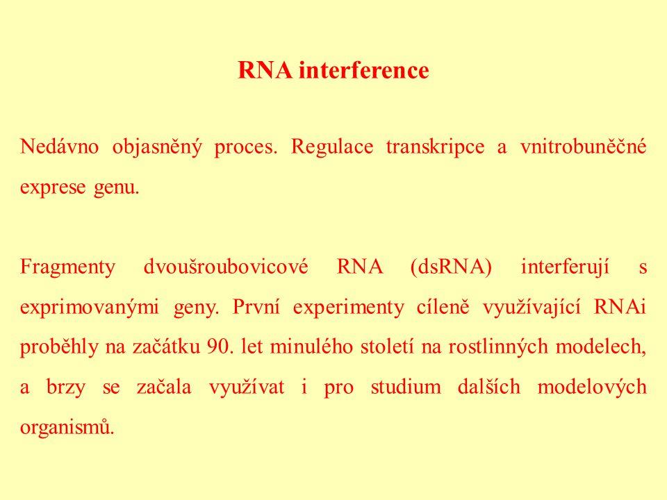 RNA interference Nedávno objasněný proces. Regulace transkripce a vnitrobuněčné exprese genu.