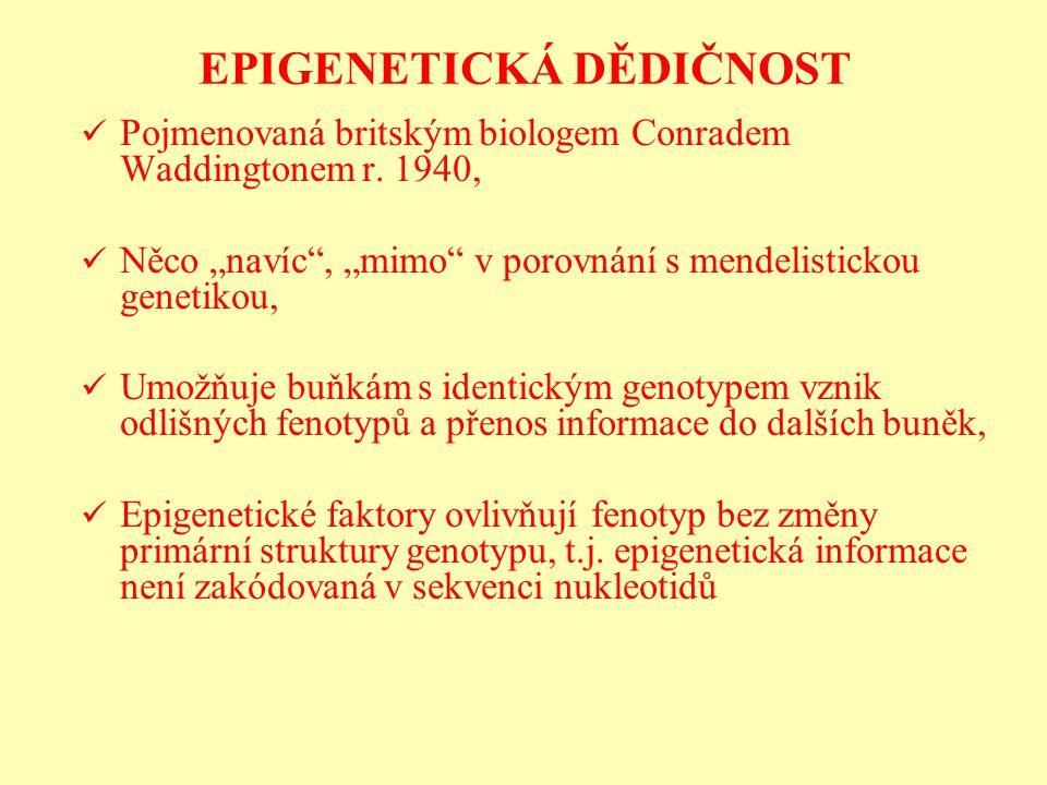 EPIGENETICKÁ DĚDIČNOST