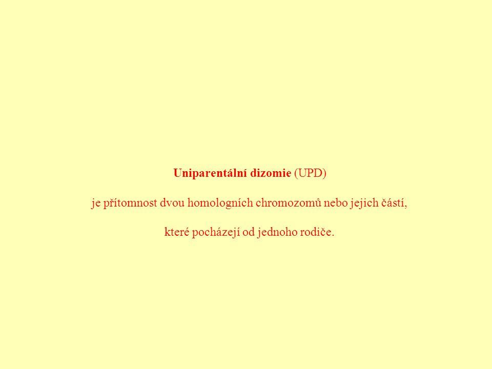 Uniparentální dizomie (UPD)