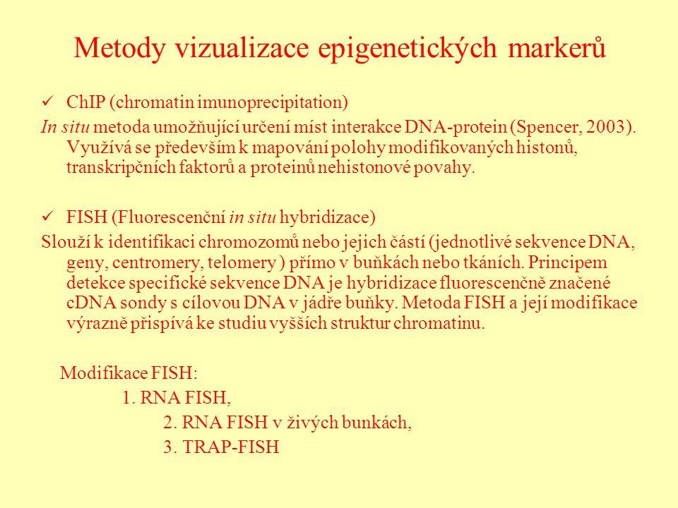 Metody vizualizace epigenetických markerů