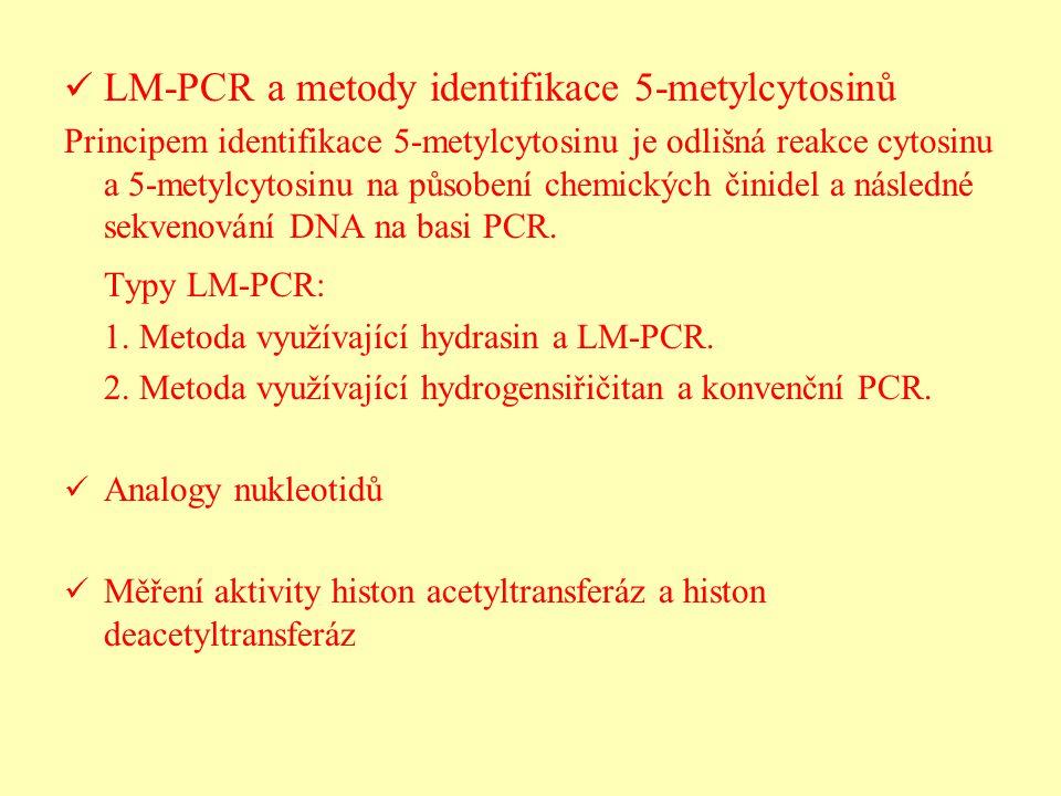 LM-PCR a metody identifikace 5-metylcytosinů