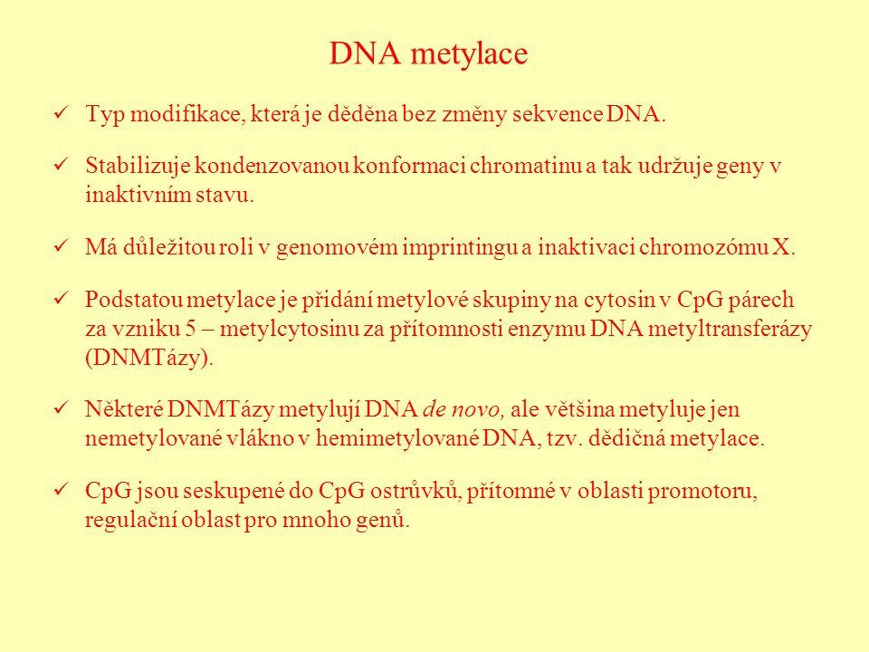DNA metylace Typ modifikace, která je děděna bez změny sekvence DNA.