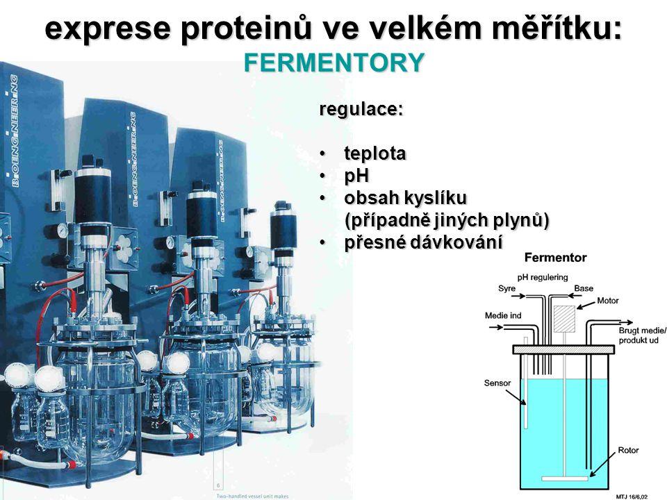exprese proteinů ve velkém měřítku: FERMENTORY