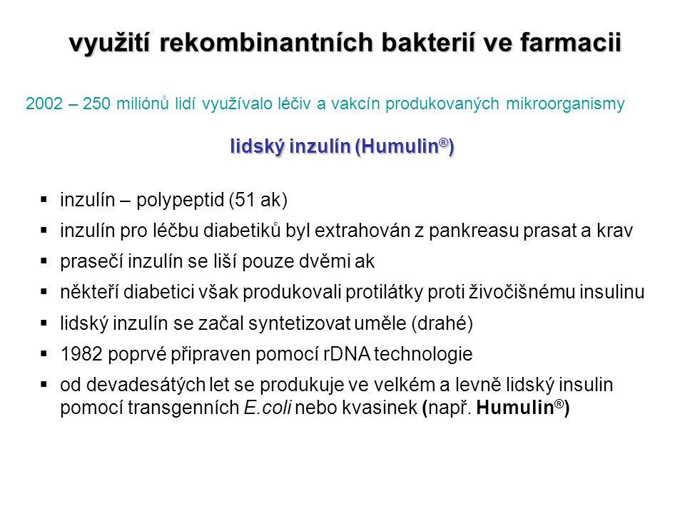 využití rekombinantních bakterií ve farmacii lidský inzulín (Humulin®)