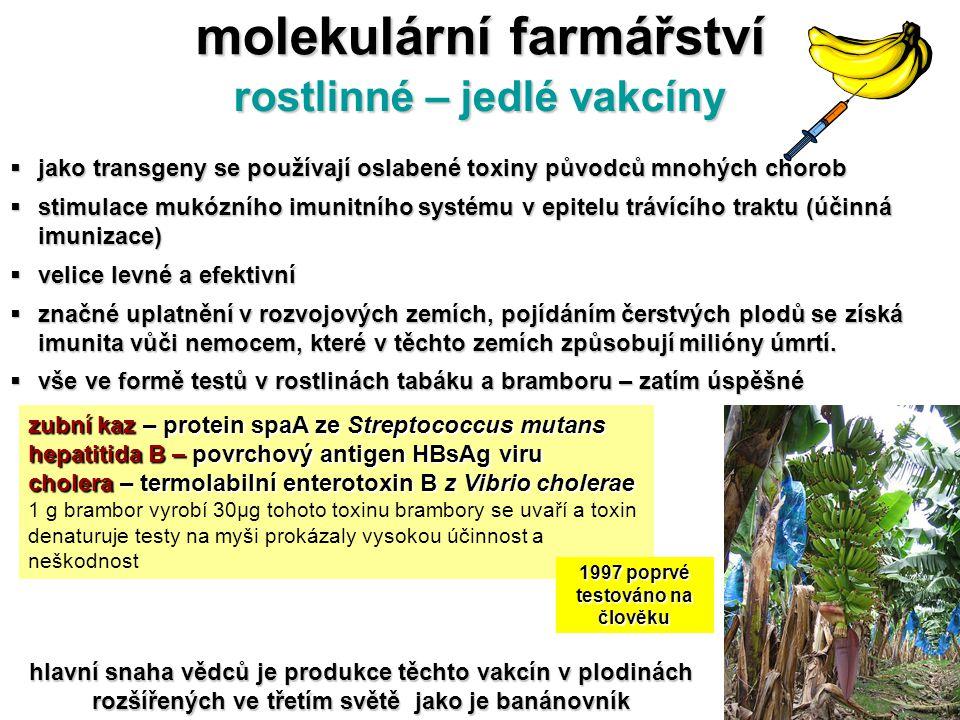 molekulární farmářství