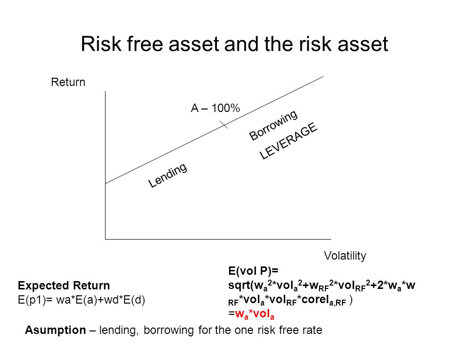 Risk free asset and the risk asset