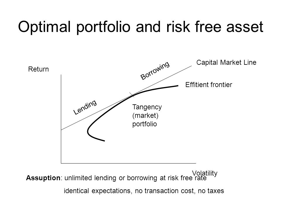 Optimal portfolio and risk free asset