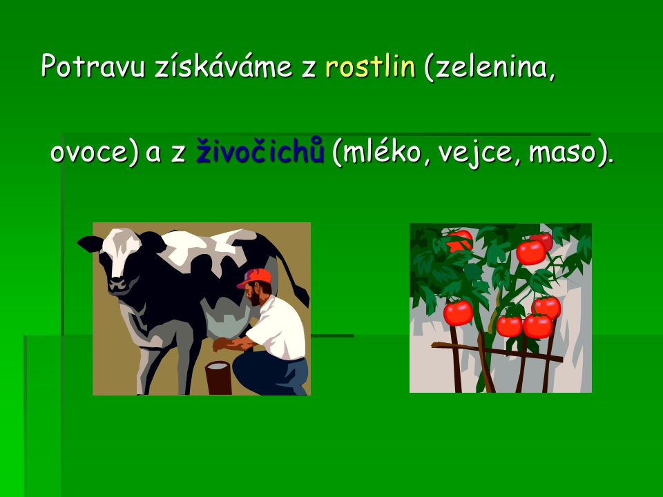 Potravu získáváme z rostlin (zelenina,