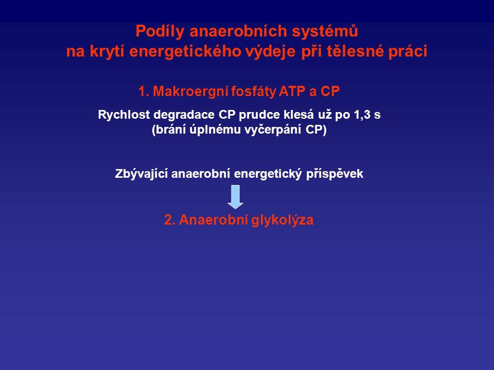 Podíly anaerobních systémů na krytí energetického výdeje při tělesné práci
