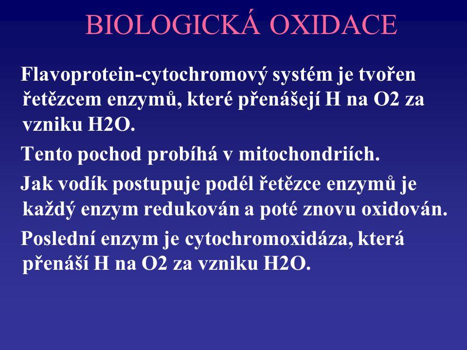 BIOLOGICKÁ OXIDACE Flavoprotein-cytochromový systém je tvořen řetězcem enzymů, které přenášejí H na O2 za vzniku H2O.