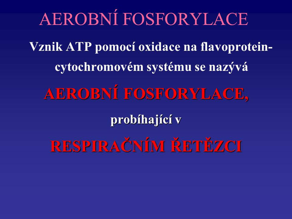 AEROBNÍ FOSFORYLACE AEROBNÍ FOSFORYLACE, RESPIRAČNÍM ŘETĚZCI