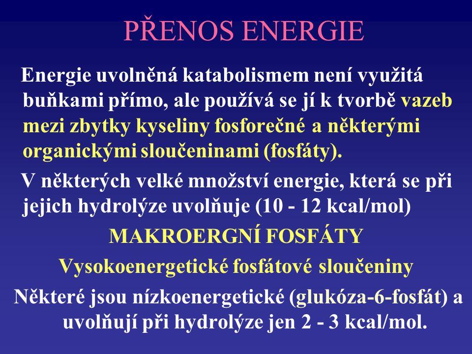 Vysokoenergetické fosfátové sloučeniny
