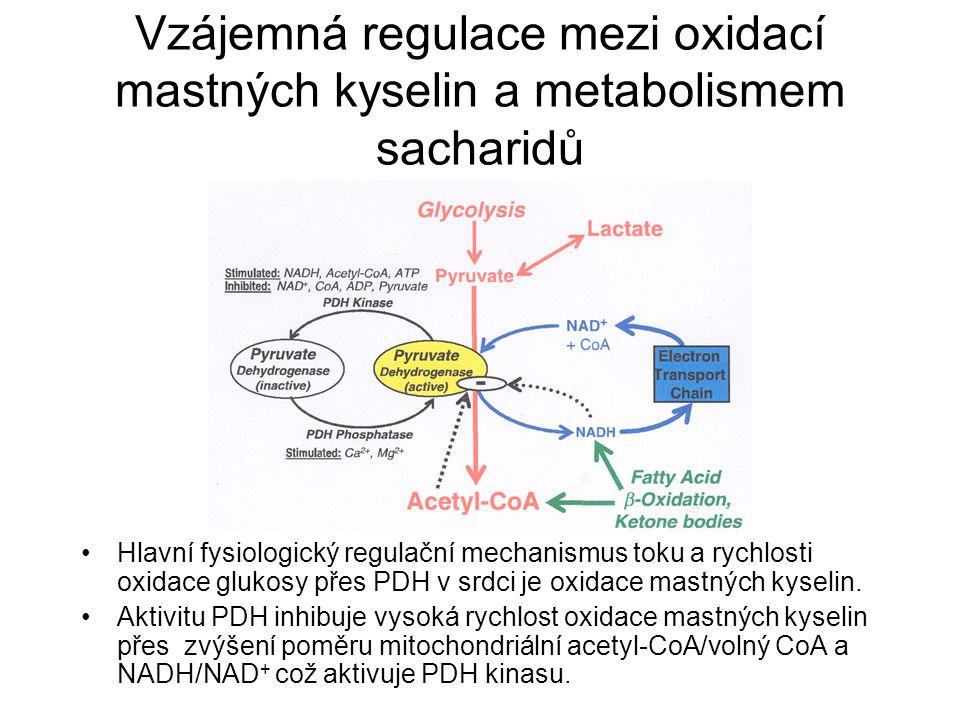 Vzájemná regulace mezi oxidací mastných kyselin a metabolismem sacharidů