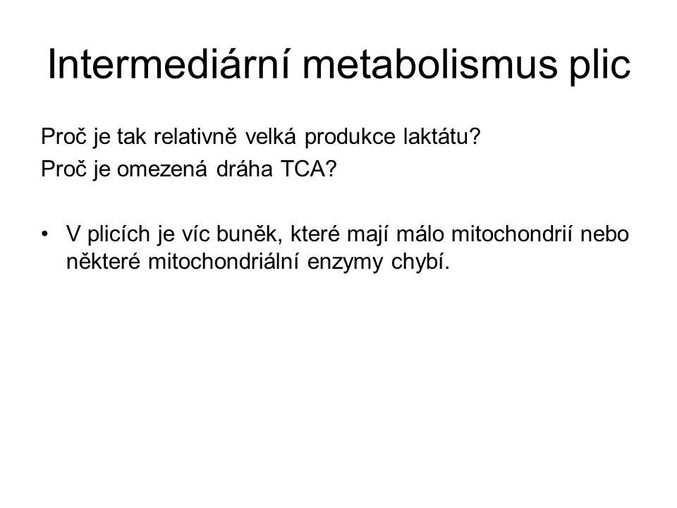 Intermediární metabolismus plic