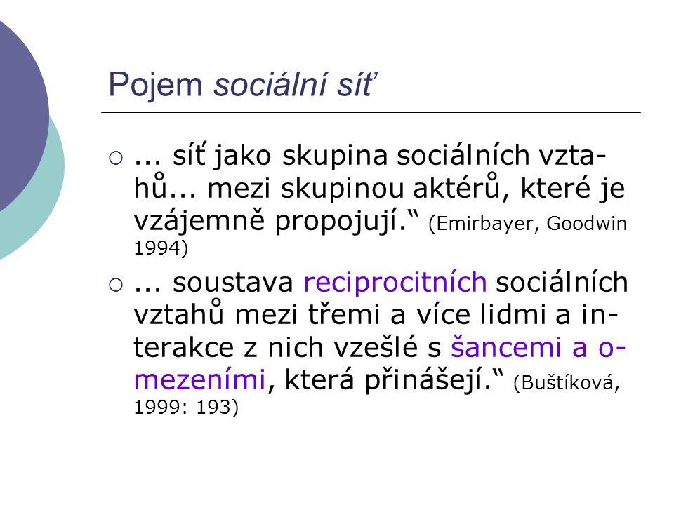 Pojem sociální síť ... síť jako skupina sociálních vzta-hů... mezi skupinou aktérů, které je vzájemně propojují. (Emirbayer, Goodwin 1994)