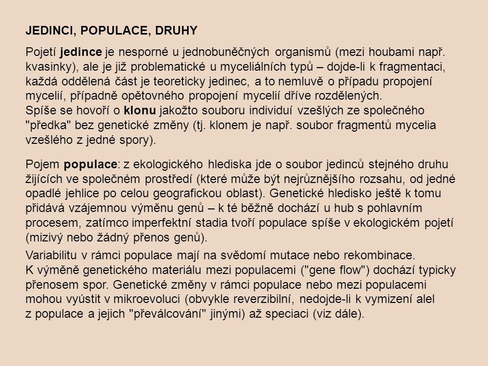 JEDINCI, POPULACE, DRUHY