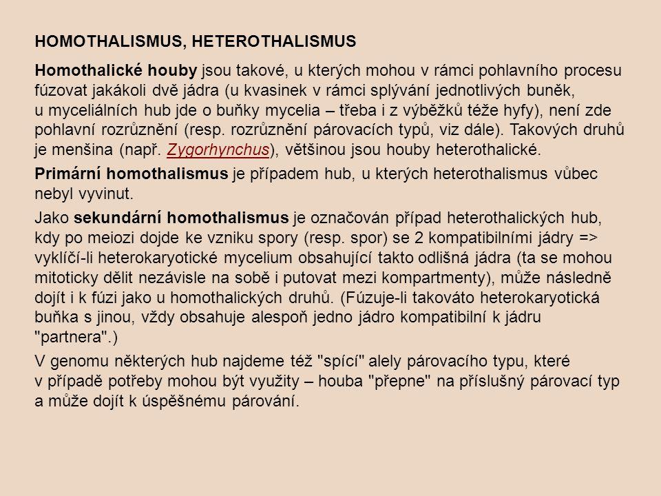 HOMOTHALISMUS, HETEROTHALISMUS