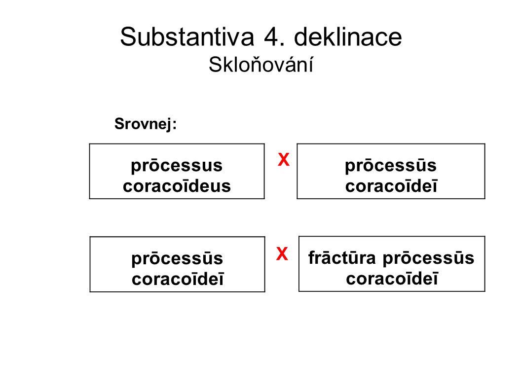 Substantiva 4. deklinace Skloňování