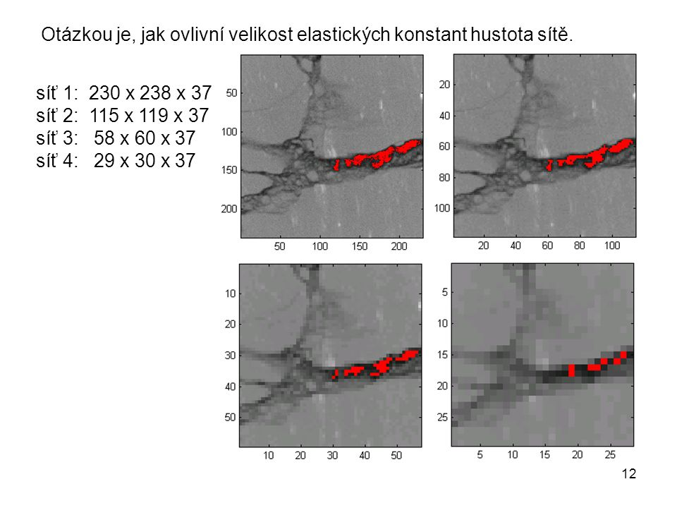Otázkou je, jak ovlivní velikost elastických konstant hustota sítě.