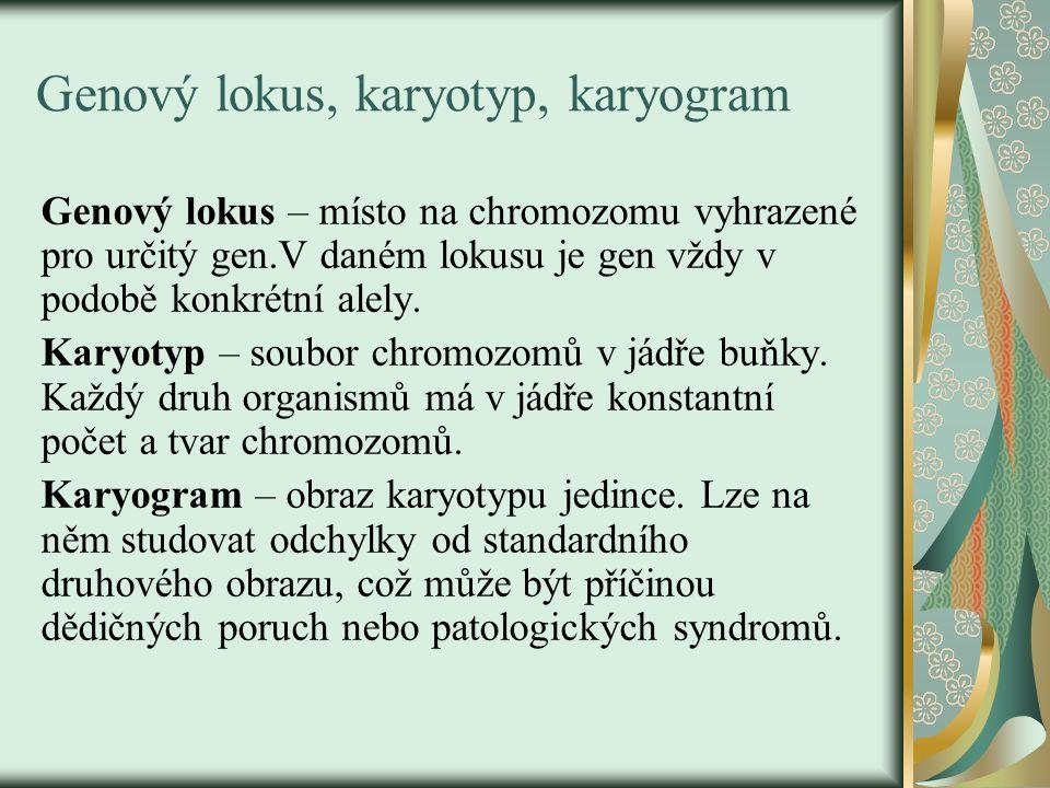 Genový lokus, karyotyp, karyogram