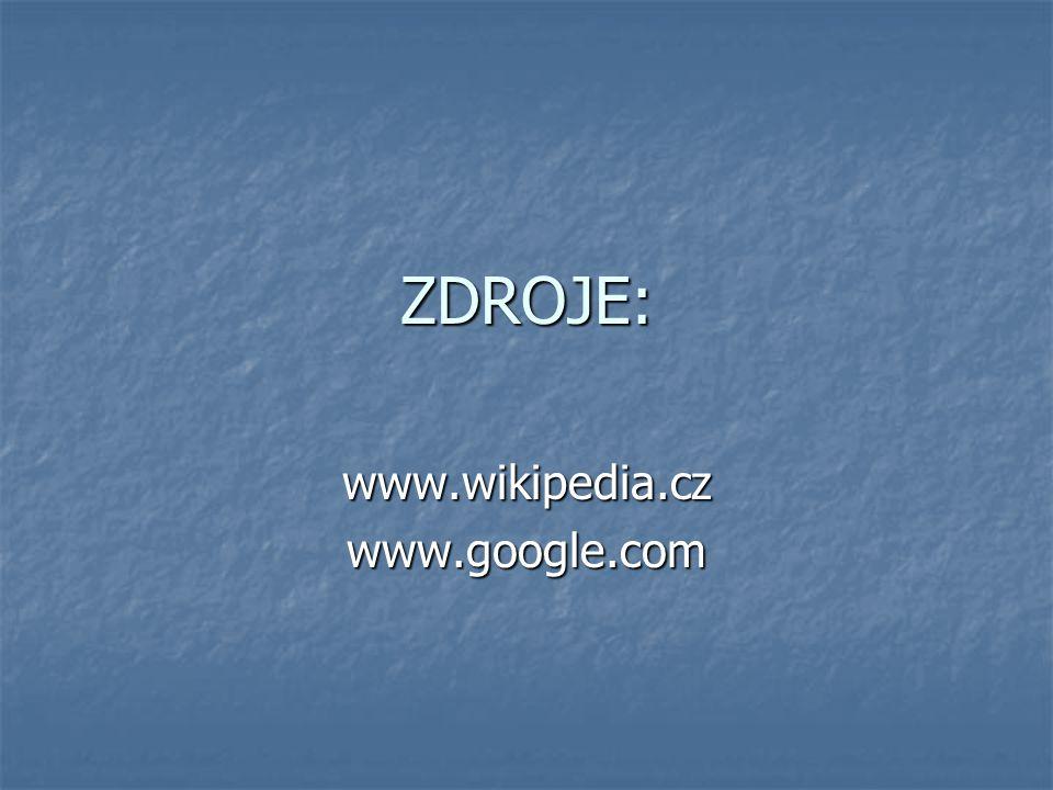 www.wikipedia.cz www.google.com