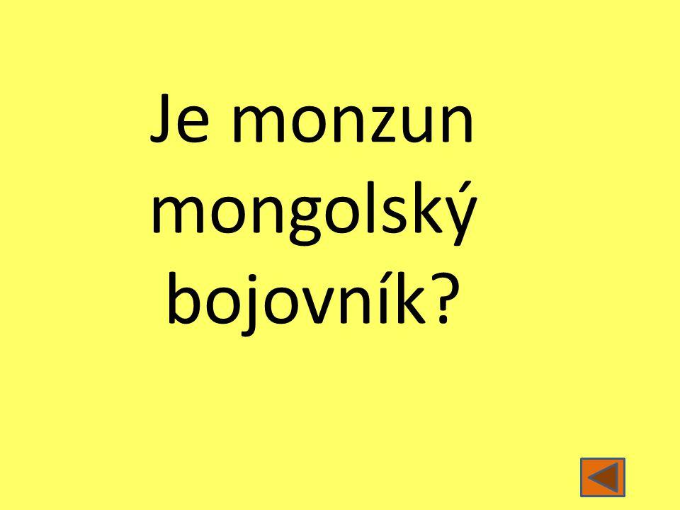 Je monzun mongolský bojovník